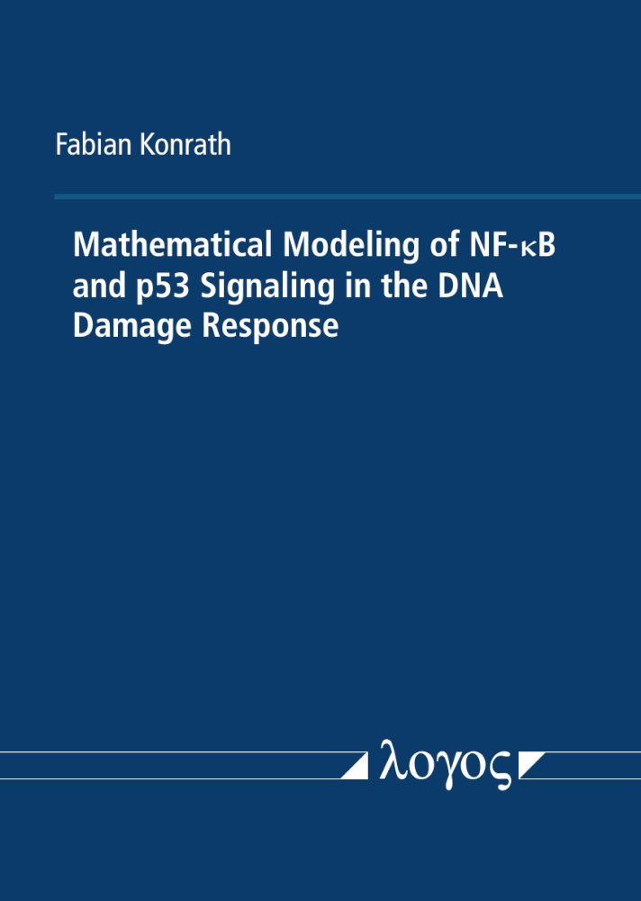 Mathematical Modeling of NF-kappaB and p53 Signaling in the DNA Damage Response